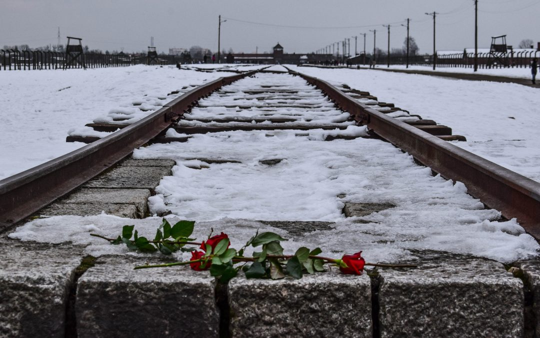 Identity and Perception of Others in Post-Holocaust Literature
